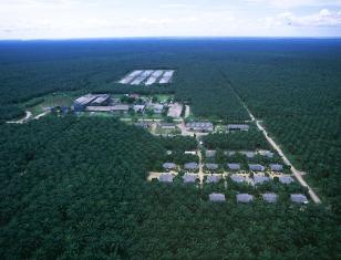 EMP for Palm Oil Mill in Liberia – Golden Veroleum Liberia (GVL)
