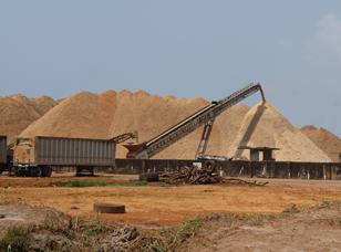 EMP for Wood Chip Production